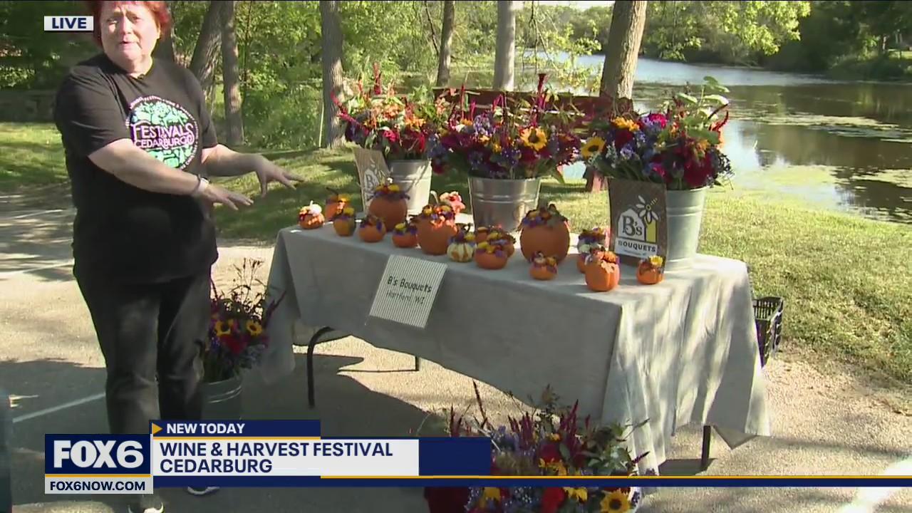 49th Annual Wine & Harvest Festival
