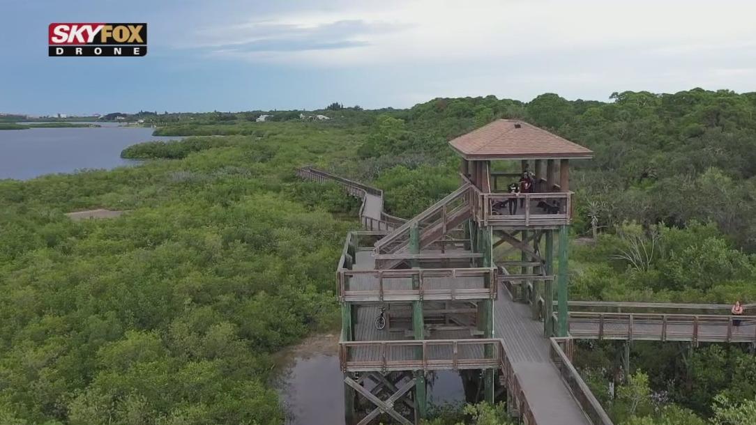 Drone Zone: Boca Ciega Park