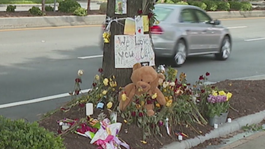 Family of woman who died after being ejected from a moving car, lauches investigation