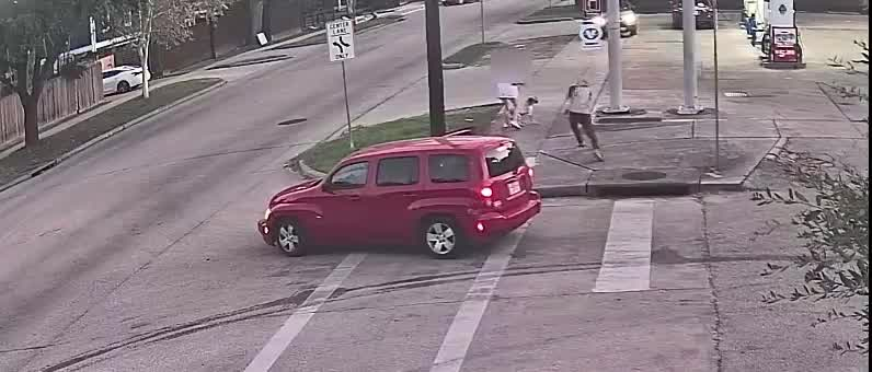 Woman, dog dragged during purse snatching in Houston